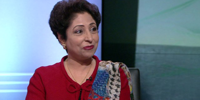 Ambassador Lodhi calls for stepping up efforts to protect journalists