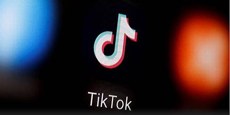 Court orders government to ban social media app TikTok