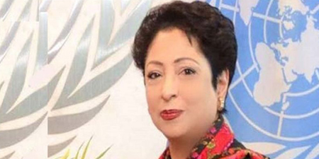 Maleeha Lodhi backs Mir Shakil-ur-Rehman, calls for his release